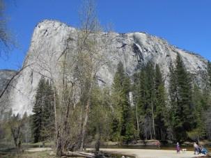 09. El Capitan from Picnic Area