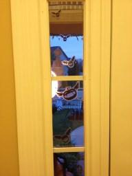Pumpkin Bats in the sidelight window