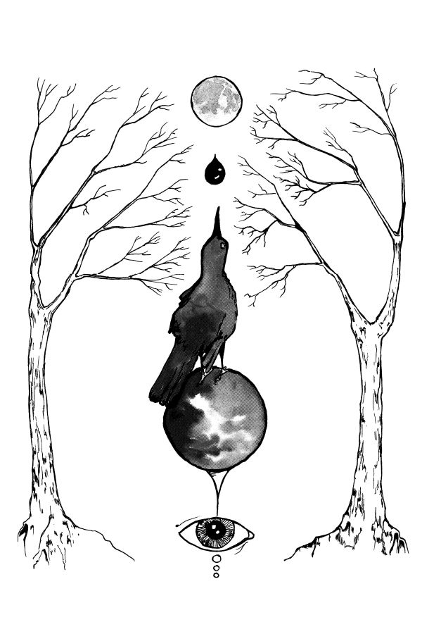 occult poster magickal grackle poster by closet of mysteries