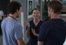 71 Grey's Anatomy | Novas imagens da 15ª temporada são divulgadas; Confira!