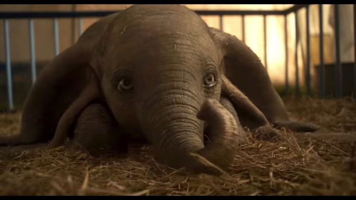 dumbo-trailer-1542265731 Crítica | Dumbo