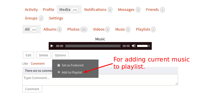 add-to-playlist-option