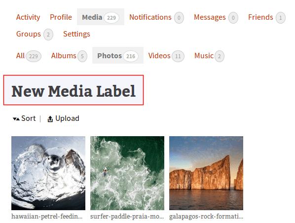 change-media-gallery-label