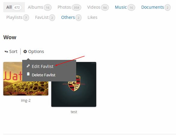 edit-favlist-option