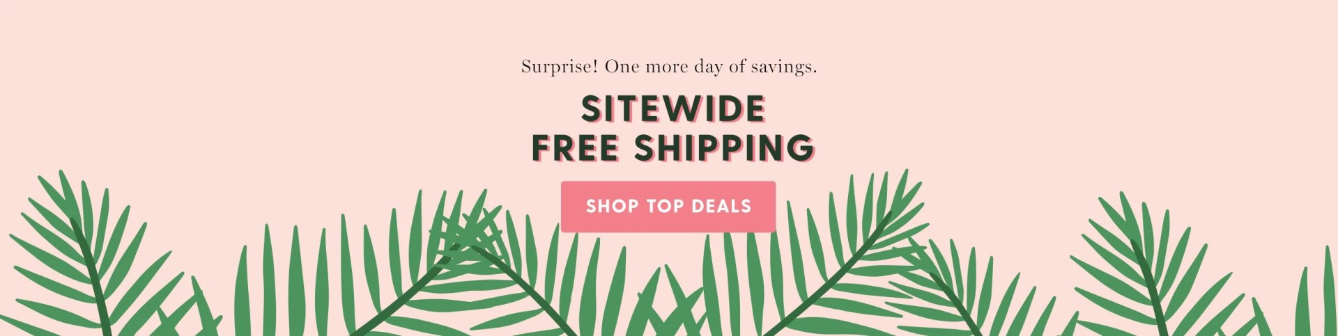 Surprise! One more day of savings. Sitewide free shipping. Shop top deals.