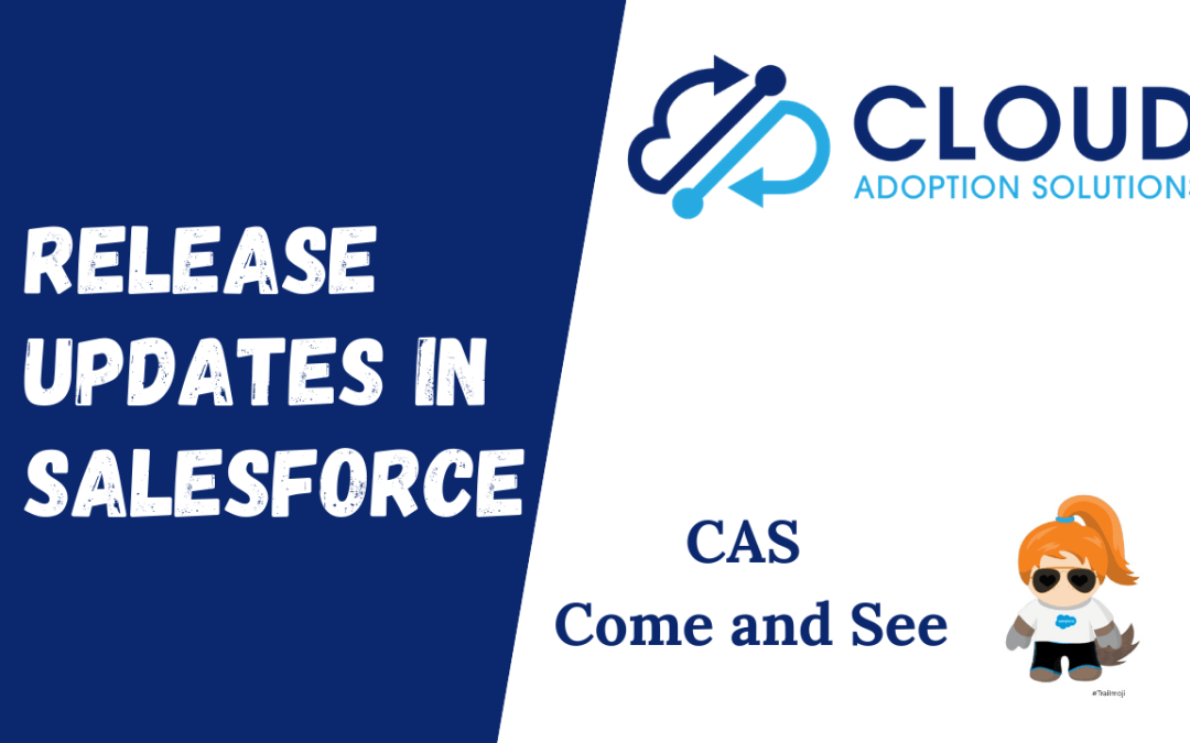 Salesforce Release Updates: CAS Come and See Video