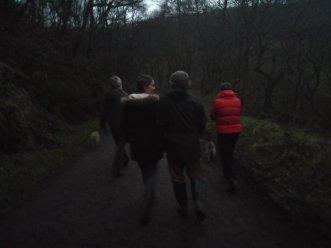 Dusky Christmas walk