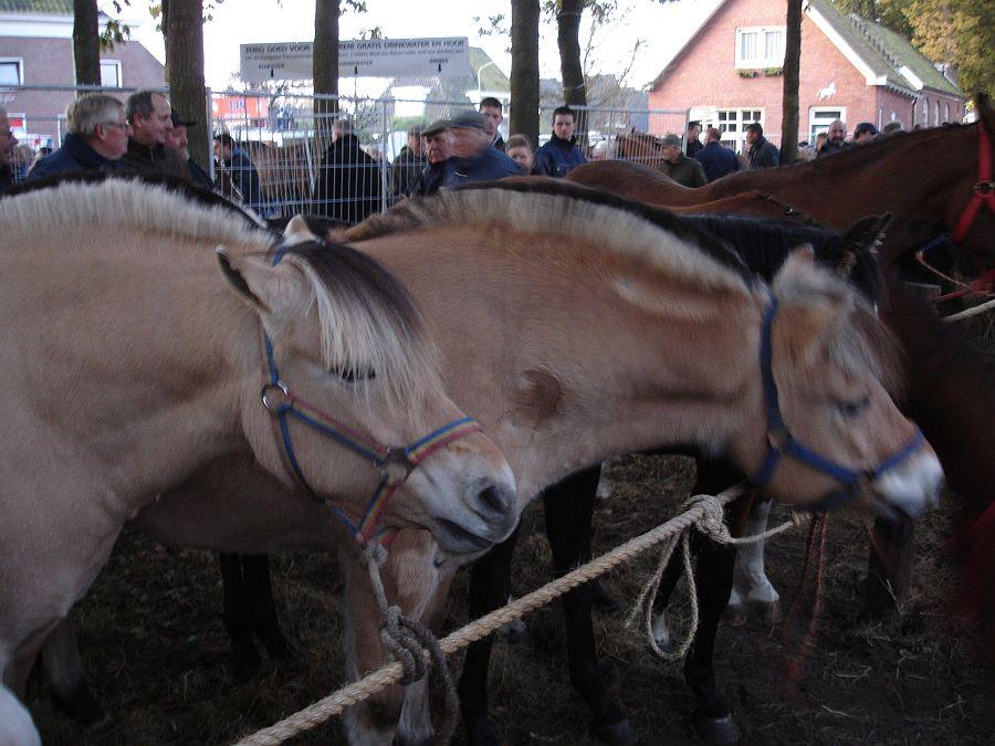 zuidlaardermarkt Horse fair art 10