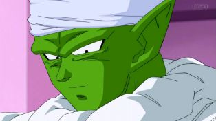 Piccolo cares too much now.