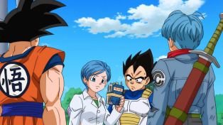 Vegeta, confused by books.