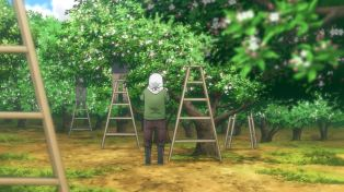 Flying Witch - 10 - 01 Kuramoto Orchard