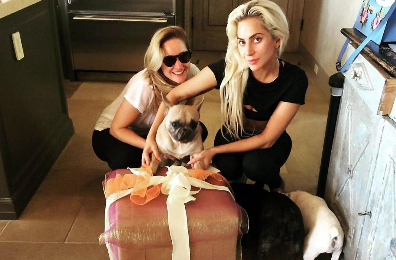 Enlèvement des chiens de Lady Gaga : cinq personnes arrêtées dans la région de Los Angeles