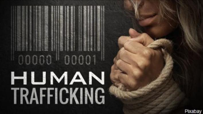 tennessee #1 for fighting human trafficking