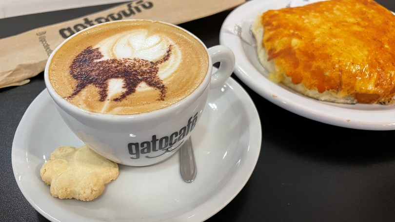 A cappuccino with an image of a cat is pictured at the Rio cat cafe or Gato Cafe, where customers can relax while adopting a feline, in Rio de Janeiro, Brazil, July 10, 2021. Picture taken July 10, 2021. REUTERS/Leonardo Benassatto