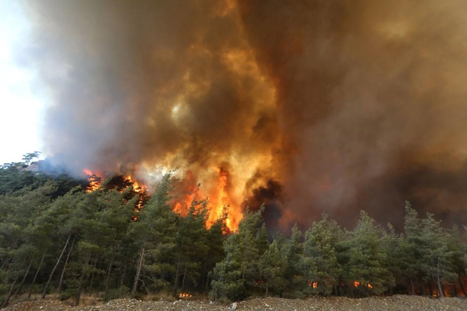 A forest fire burns near Marmaris, Turkey, July 30, 2021. REUTERS/Kenan Gurbuz