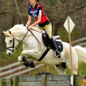 ©Flickr/Dominion Valley Pony Club
