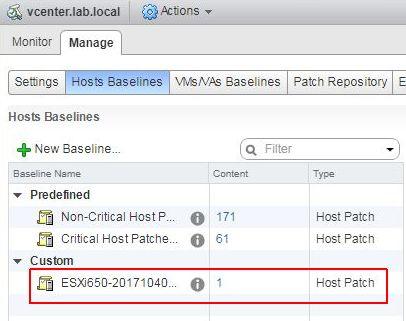 Update ESXi - Custom Baseline