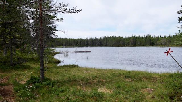 Björnsjön