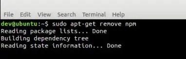 uninstall-npm-in-ubuntu