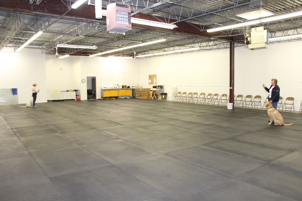 Minnetonka Training Ring