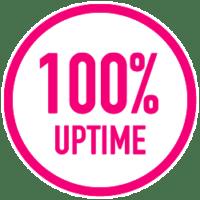100 percent uptime