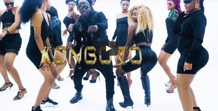 AUDIO: QBoy Msafi – KONGORO Mp3 DOWNLOAD