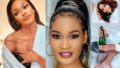 Photo of Why Tanasha Donna Should Take Notes From Diamond Platnumz Exes, Wema Sepetu and Hamisa Mobetto