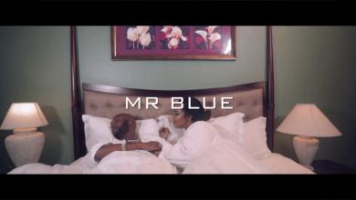 Photo of VIDE: Mr Blue – MAUTUNDU