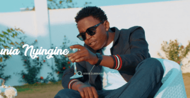 Linex – Dunia Nyingine Mp4 Download