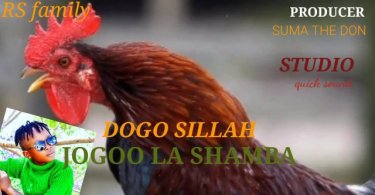 Dogo Sillah – Jogoo La Shamba Mp3 Download