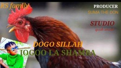 Photo of Dogo Sillah – Jogoo La Shamba Mp3 Download