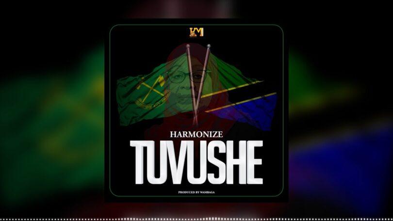AUDIO: Harmonize - Tuvushe Mp3 Download