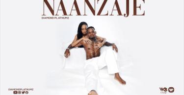 AUDIO: Diamond Platnumz - Naanzaje Mp3 Download