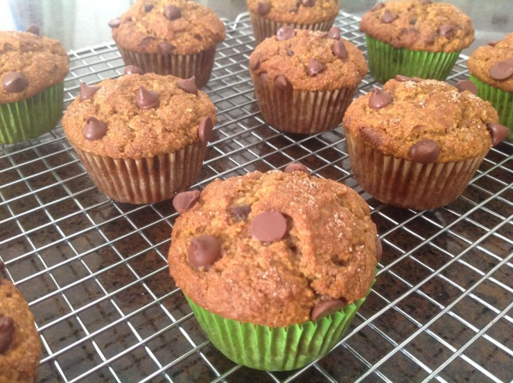 Pumpkin Chocolate Chip Muffins cooling