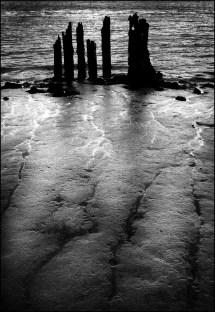 Humber pylons