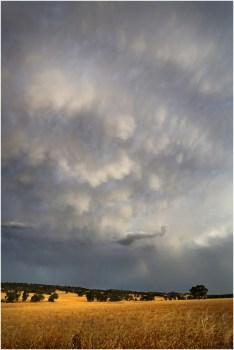 Beverley storm_s