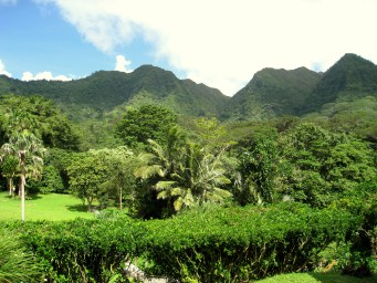 Lyon_Arboretum,_Oahu,_Hawaii_-_general_view