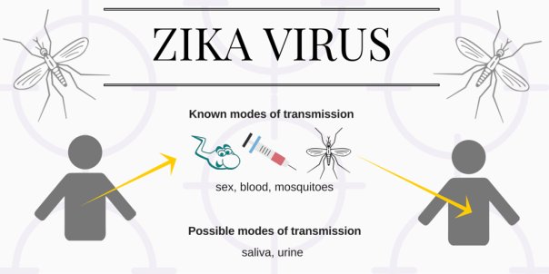 ZIKA VIRUS-transmission