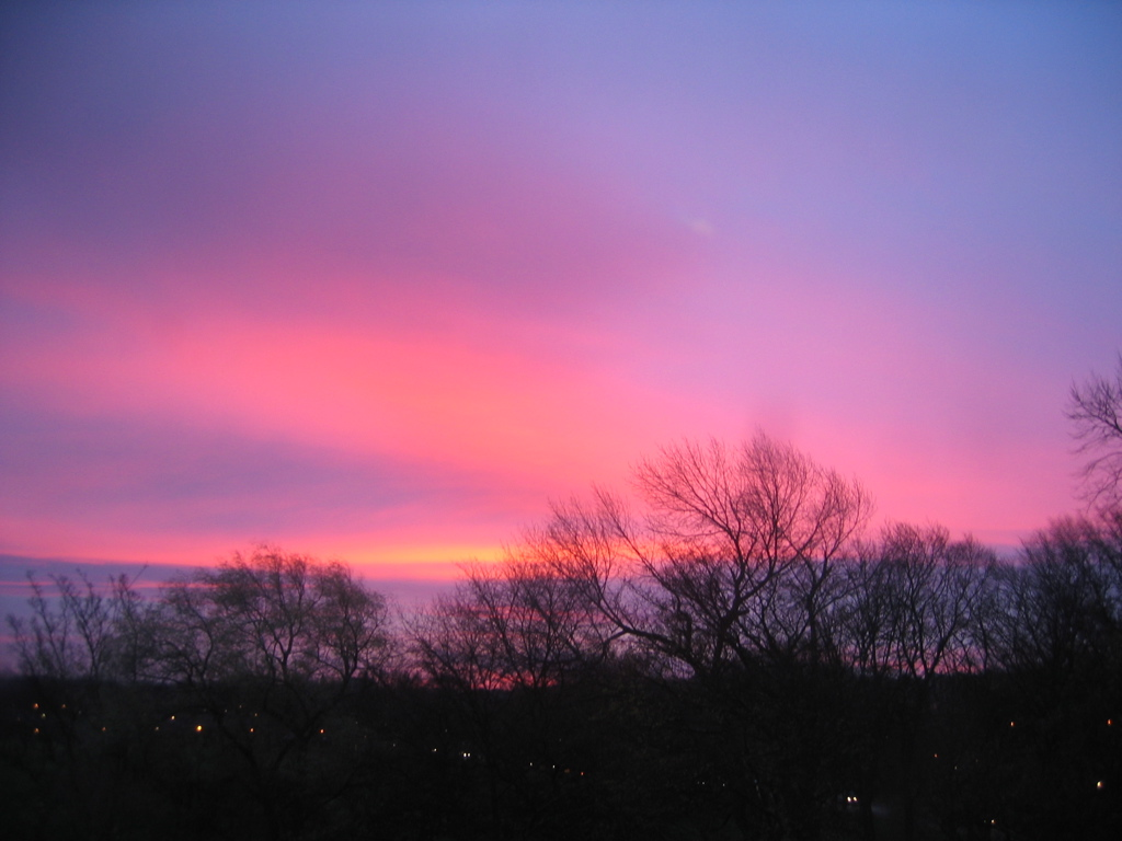 Spectacular Sunrise in Purples and Pinks