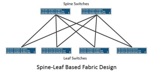 Spine-leaf versus large chassis switch fabric designs