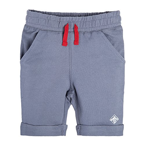Burt's Bees Baby Little Kids Organic Shorts, Prairie Blue French Terry, 3T