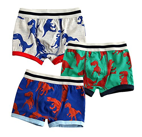 Happy childhood 3 Pack Baby Boy Underwear Box Briefs Cotton Comfortable Pants Dinosaur Pattern for Toddler Kids 2-7T (6-7T/120CM)