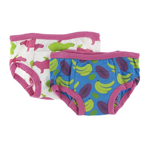 Kickee Pants Bamboo Boy/Girl Training Pants - 2 Pack (3T/4T, Natural Capybara & Tropical Fruit)