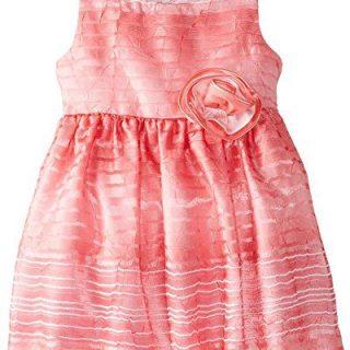 Sweet Heart Rose Little Girls' Organza Stripe Occasion Dress, Pink, 5