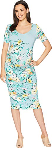 Yumi Kim Women's Maternity Blossom Dress