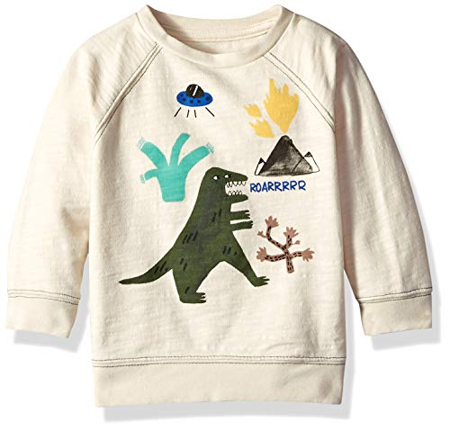 Gymboree Baby Boys Long Sleeve Pullover Sweater