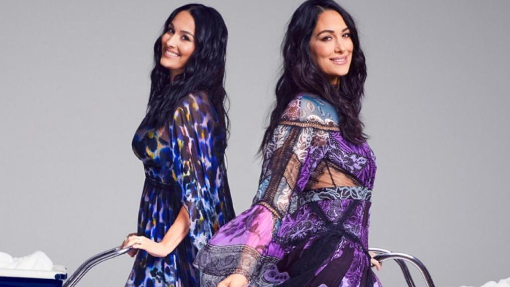 01 the bella twins pregnant nikki bella brie bella baby bumps due dates expecting 2020