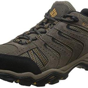 Columbia Men's North Plains II Hiking Shoe, Wet Sand, Squash, 14 D US