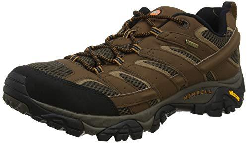Merrell Men's Moab 2 Gtx Hiking Shoe, Earth, 9.5 M US