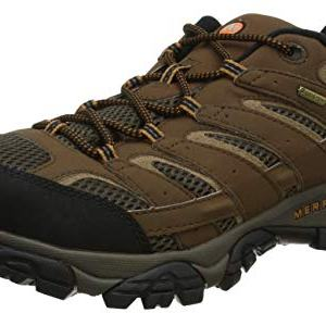 Merrell Men's Moab 2 Gtx Hiking Shoe, Earth, 9.5 M US